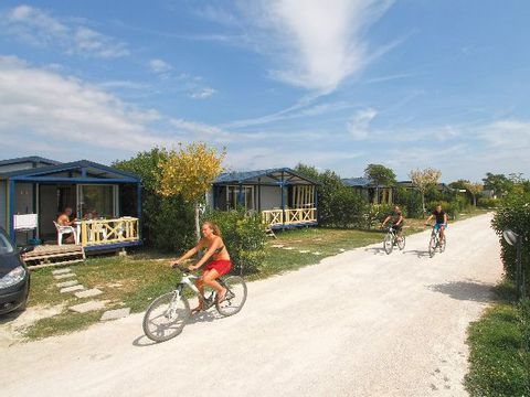 Camping Les Sources - Camping Vaucluse - Image N°22