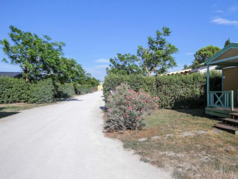 Camping Les Sources - Camping Vaucluse - Image N°18
