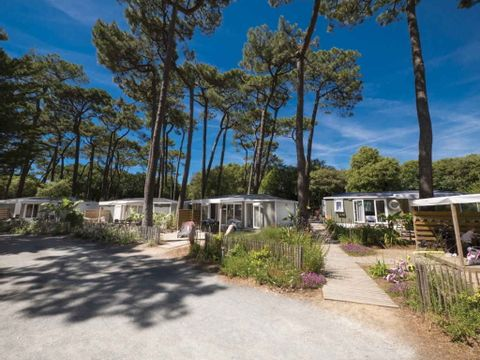 Camping Le Littoral - Camping Vendée - Image N°14