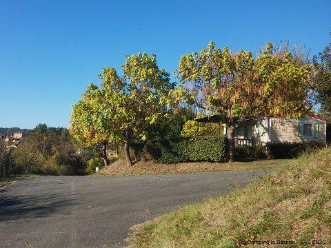Camping La Bastide - Camping Dordogne - Image N°12