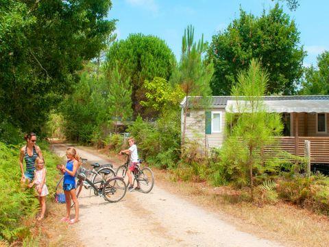 Camping Les Vignes - Camping Landes - Image N°32