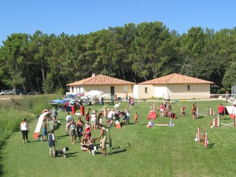 Camping La Sousta - Camping Gard - Image N°7