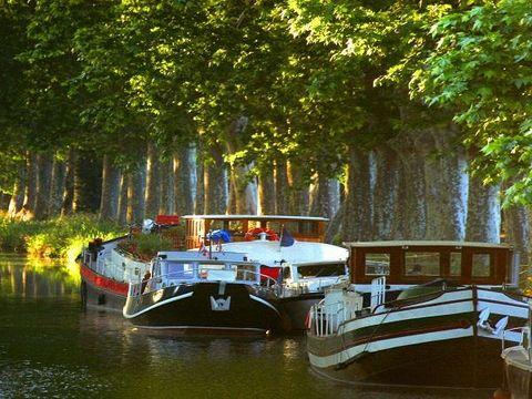 Camping Sunelia Mas des Lavandes - Camping Herault - Image N°33