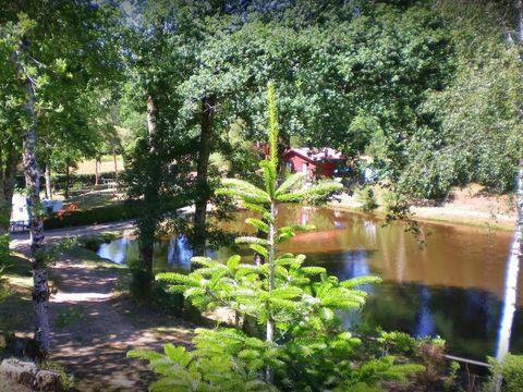 Camping la Ripole - Camping Dordogna - Image N°15