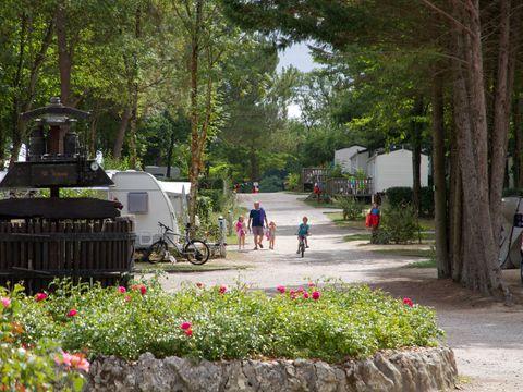 Camping Le Pressoir   - Camping Gironde - Image N°8