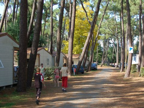 Camping Les Biches - Camping Vendée - Image N°16