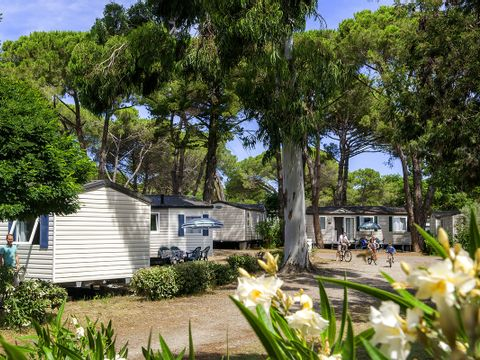 Camping Domaine d'Anghione - Camping Corse du nord - Image N°24