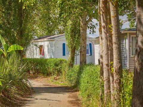 Camping Les Almadies  - Camping Vendée - Image N°26