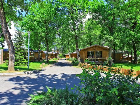 Camping Albirondack Park Lodge And Spa - Camping Tarn - Image N°8