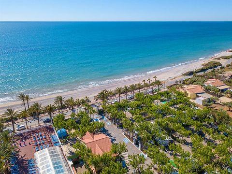 Camping Playa Tropicana - Camping Castellón - Image N°16