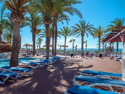 Camping Playa Tropicana - Camping Castellón - Image N°10