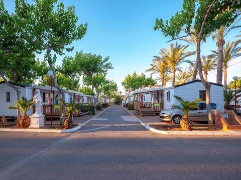 Camping Playa Tropicana - Camping Castellón - Image N°12