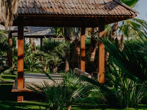 Camping Alannia Costa Blanca - Camping Costa Blanca - Image N°52