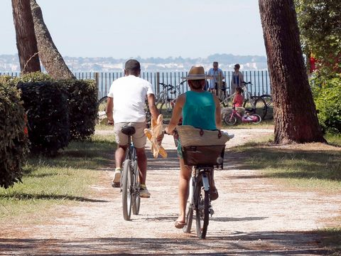 Camping Fontaine Vieille - Camping Gironde - Image N°11