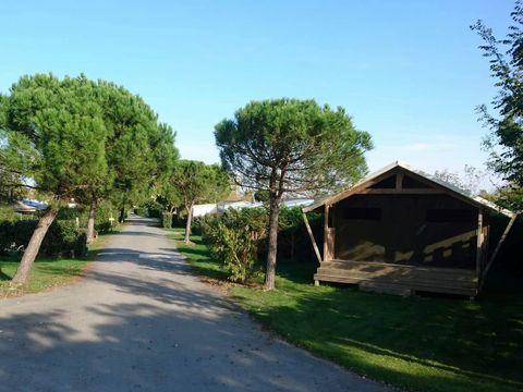 Camping Le Port de Moricq - Camping Vendée - Image N°13