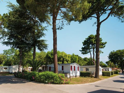 Camping Club Le Littoral - Camping Pyrenees-Orientales - Image N°33