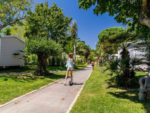 Camping L'Hippocampe  - Camping Pyrenees-Orientales - Image N°17