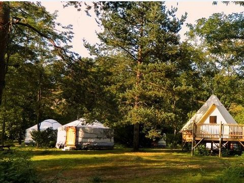 Camping Le Viaduc - Camping Ardeche - Image N°4