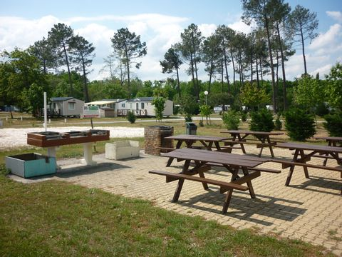 Camping Le Braou - Camping Gironde - Image N°8