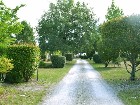 Camping Le Braou - Camping Gironde - Image N°13
