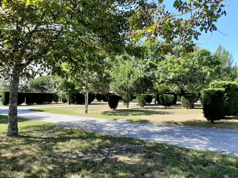 Camping Le Braou - Camping Gironde - Image N°12