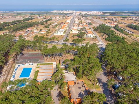 Camping Vagueira - Camping Centre du Portugal - Image N°15