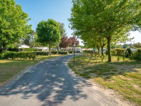 Camping Zagarella - Camping Paradis - Camping Vendée - Image N°26