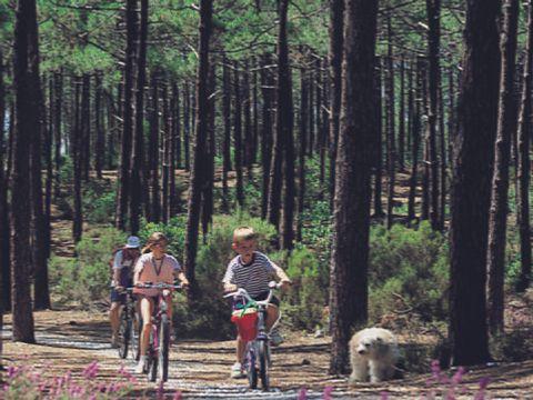 Camping Azu'Rivage - Camping Landes - Image N°5