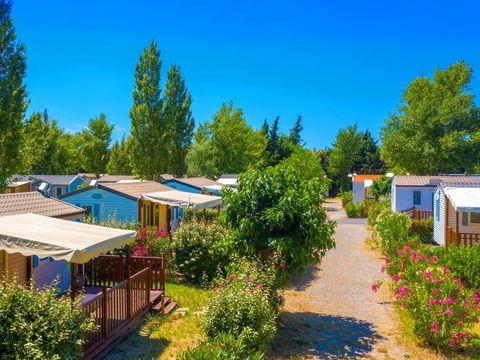 Camping Ensoya - Camping Aude - Image N°19