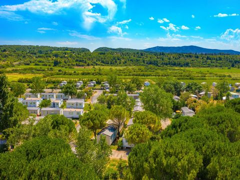 Camping Ensoya - Camping Aude - Image N°2