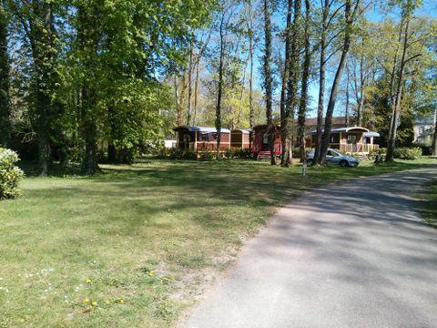 Camping Village de la Champagne  - Camping Aube - Image N°12