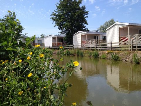 Camping La Gerfleur  - Camping Manche - Image N°6