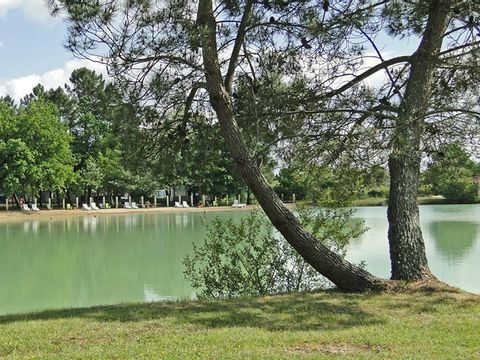 Camping le Chene du lac  - Camping Gironde - Image N°10
