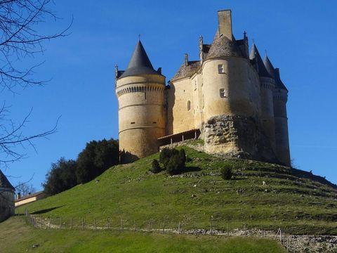 Camping Domaine de la Colombière - Camping Dordogne - Image N°29