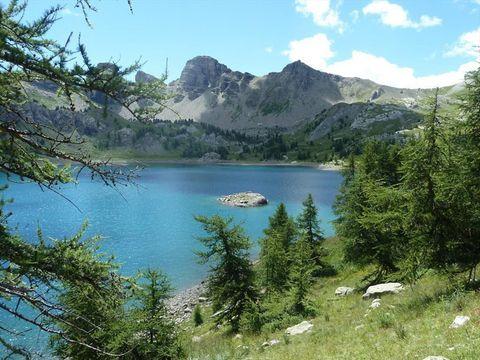 Alpes-de-Haute-Provence  Camping Les Relarguiers - Camping Alpes-de-Haute-Provence - Afbeelding N°11