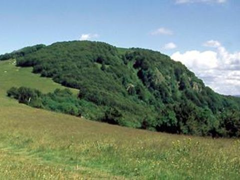 Camping l'Etang des Forges  - Camping Territoire-de-Belfort - Image N°27