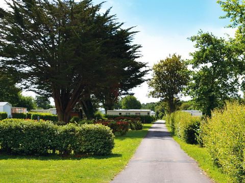 Camping maeva Club La Mer Blanche  - Camping Finistere - Image N°30