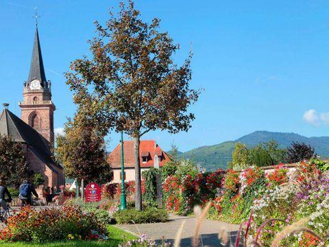 Résidence Le Domaine des Rois - Camping Haut-Rhin - Image N°9