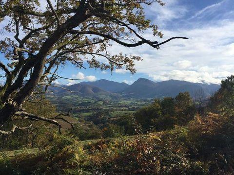 CAMPING BARETOUS PYRENEES  - Camping Pyrenees-Atlantiques - Image N°10
