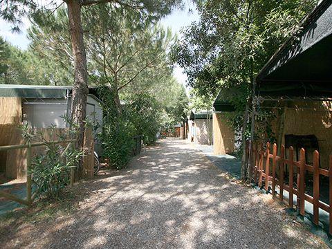 Camping Villaggio Il Gineprino - Camping Livourne - Image N°5