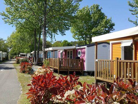 Camping Mayotte Vacances  - Camping Landes - Image N°34