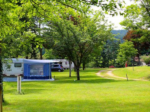 Camping de l'Orangerie  - Camping Loire - Image N°2