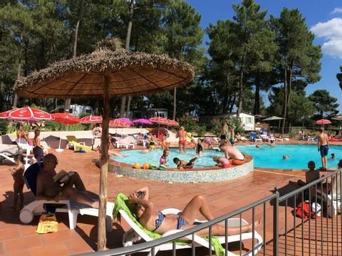 Vaucluse  Camping La Simioune - Camping Vaucluse - Afbeelding N°5