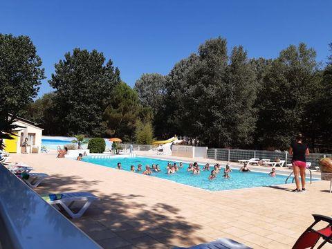 Camping Domaine de Gaujac - Camping Paradis - Camping Gard - Image N°4