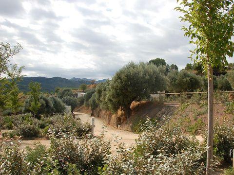 Camping Terra Alta - Camping Tarragone - Image N°26