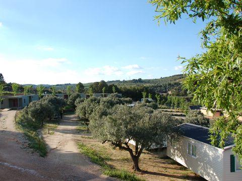 Camping Terra Alta - Camping Tarragona - Image N°11