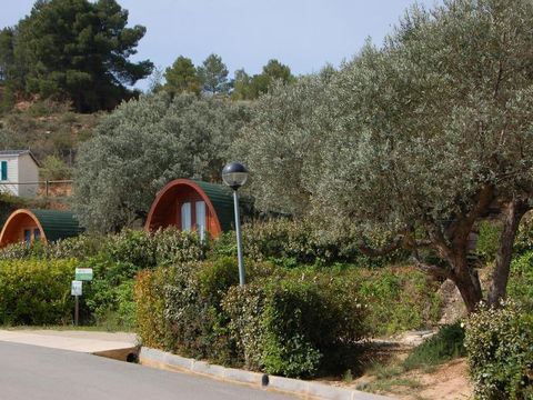 Camping Terra Alta - Camping Tarragone - Image N°19