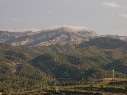 Camping Terra Alta - Camping Tarragone - Image N°28