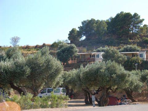 Camping Terra Alta - Camping Tarragona - Image N°6