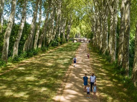 Camping Le Robinson - Camping Cher - Image N°8